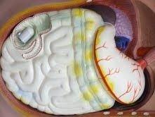 В МИФИ разработан комплекс эндоскопических исследований