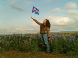 Россиянам стало проще получать визы в Исландию