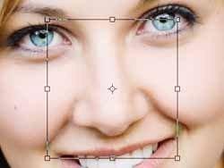 Фотографии носа заменят отпечатки пальцев