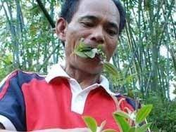 50-летний китаец стал травоядным