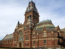 Грузия направит абхазов и осетин в Гарвард и Сорбонну