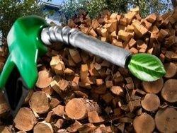Биотопливо, которое не надо разбавлять бензином