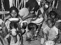 Выделенные голодающим деньги попали к боевикам