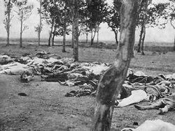 Власти США намерены признать геноцид армян в Турции