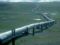 Nabucco отчаянно не хватает газа