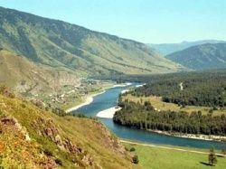 В Алтайском крае десятки тысяч тонн зерна - на свалке