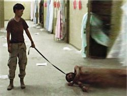 Директор ЦРУ одобрил уничтожение видеозаписей пыток