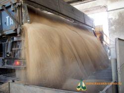 РФ просит Киев помочь с экспортом зерна