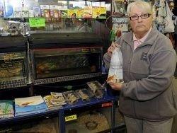 В Англии оштрафовали женщину за продажу золотой рыбки