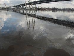 По Неве расползается нефтяное пятно