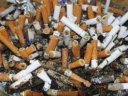 Сигаретные окурки — ценное химическое сырье