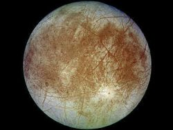 Морозоустойчивые грибы расширили круг обитаемых планет