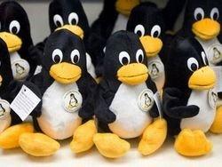Школьный Linux: жизнь после тендера