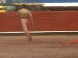 В Мексике арестован испугавшийся быка матадор