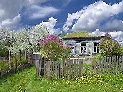 Садовые товарищества – последний оплот народовластия