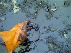 Россия не застрахована от аварий в нефтяной отрасли