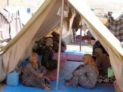 Среди беженцев в Узбекистане находятся российские граждане