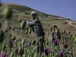Азия сталкивается с проблемой наркотиков