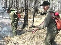 В Прибайкалье погашены все лесные пожары