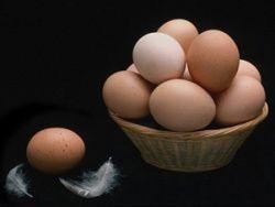 Яйца кур могут содержать опасные вещества