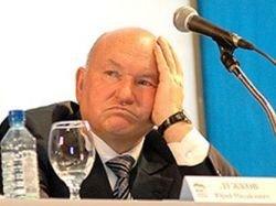 Жириновский поможет Страсбургу считать доходы Лужкова
