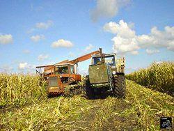 Сельское хозяйство –  привлекательная отрасль