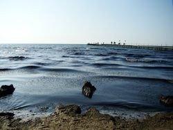 В Мексиканском заливе возобновились работы по сбору нефти