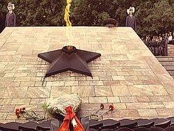 Медведев возложил венок к Могиле Неизвестного солдата