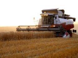 Китай желает инвестировать в сельское хозяйство Алтая