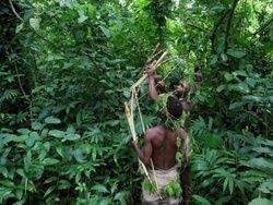 В Индонезии нашли неизвестное науке племя