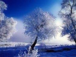 Следующая зима тоже будет суровой