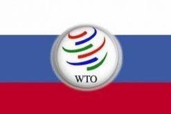 Россия вступит в ВТО не раньше весны