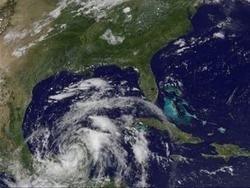 "Атлантический шторм \""Алекс\"" на Юкатане унес 10 жизней"