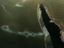 Нефтяные пятна достигли побережья Миссисипи