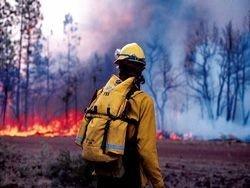 В Ростовской области из-за пожара МЧС эвакуирует местных жителей