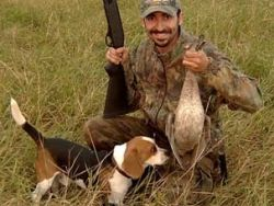 С 6 октября 2010 года в Волгоградской области официально разрешен сезон охоты.
