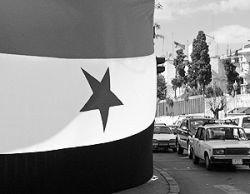 Белоруссия в помощь: Сирия и Таможенный союз трех стран