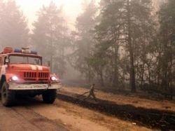 МЧС отчиталось о стабилизации ситуации с пожарами в Подмосковье