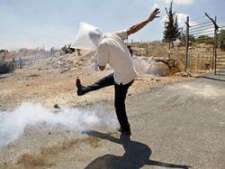 Палестина: быть террористом, чтобы стать студентом