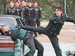 Как работает полиция в разные странах мира?