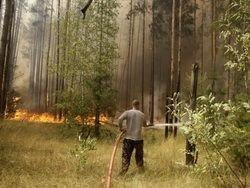 Бывшие офицеры МЧС рассказали о причинах пожаров минувшего лета