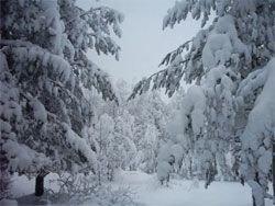 В центре России заметно похолодает