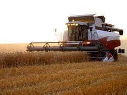 Деньги на модернизацию сельского хозяйства увеличат в 3 раза