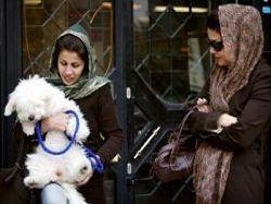 В Иране запретили рекламу продажи животных