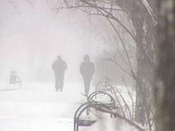 В Польше против снегопадов борются бесплатным транспортом