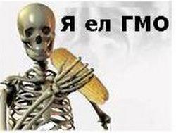 В России разрешили сеять зерновые с использованием ГМО