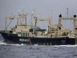Новость на Newsland: Запутав винт экологи пытались остановить китобойное судно