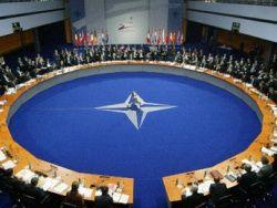 НАТО: украинцы воруют топливо миротворческих сил в Косово
