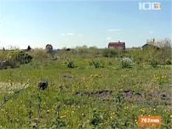 В России посеяно на 3 млн га меньше зерновых