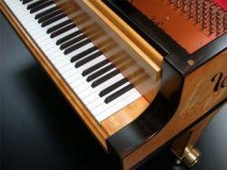 Австралийская фирма выпустила рояль со 102 клавишами